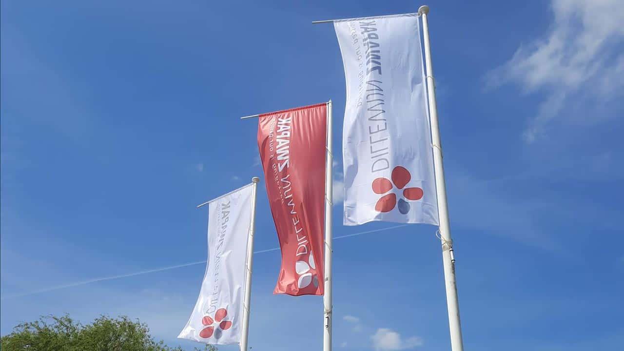 Van Riemsdijk Reklame - DillewijnZwapak - vlaggen